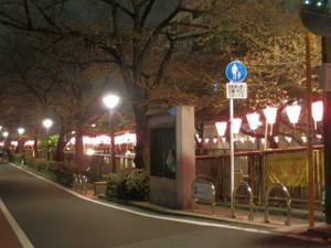 Nakamesakurayakei